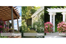 Pergola Trellis or Arbor