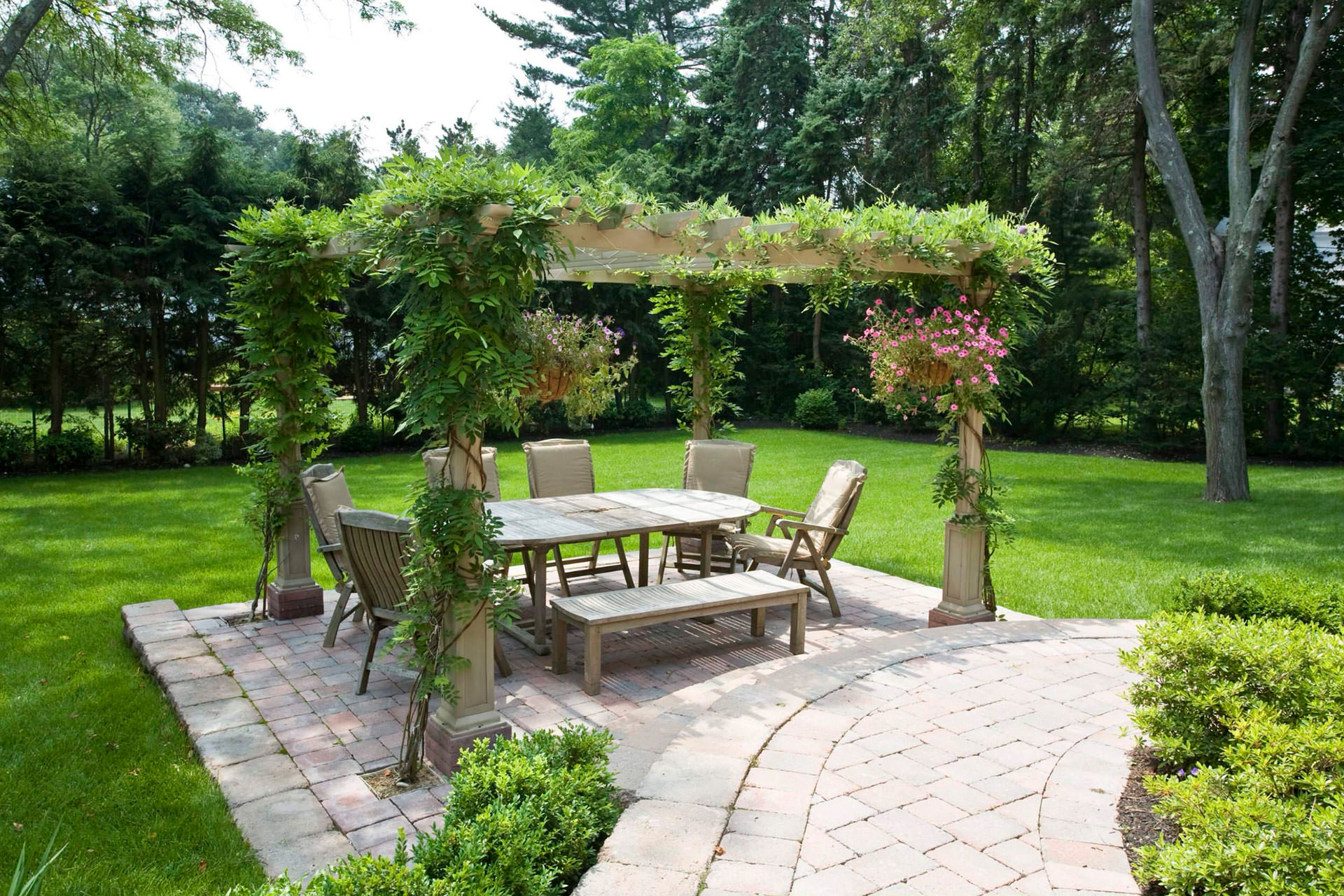Pergola Plants Guide Shade and Enhance Your Outdoor Space