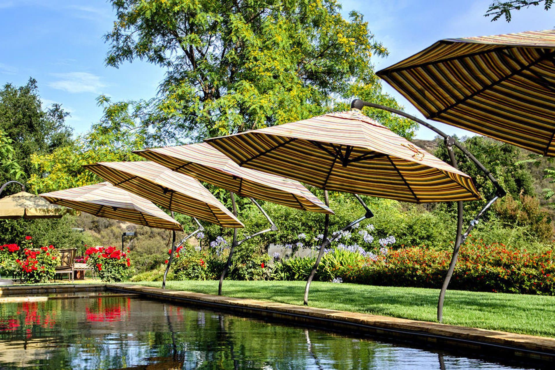 Pool Shade Ideas Umbrellas